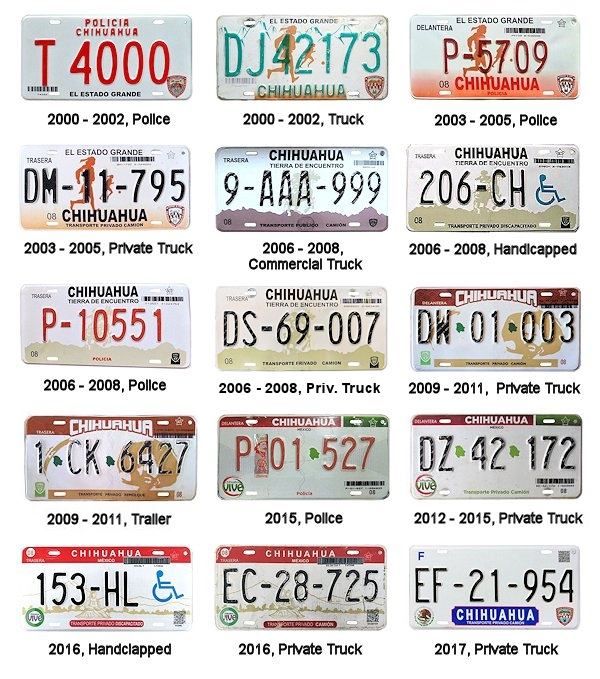 Chihuahua License Plates