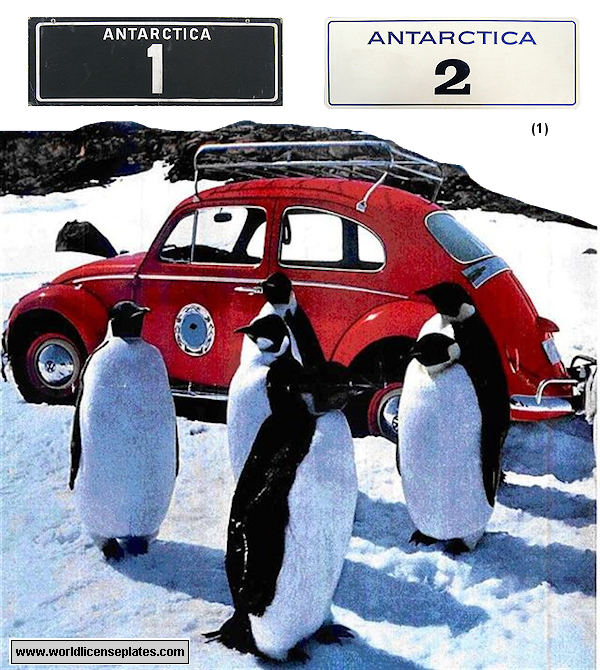 Antarctica Red Beetle License Plate